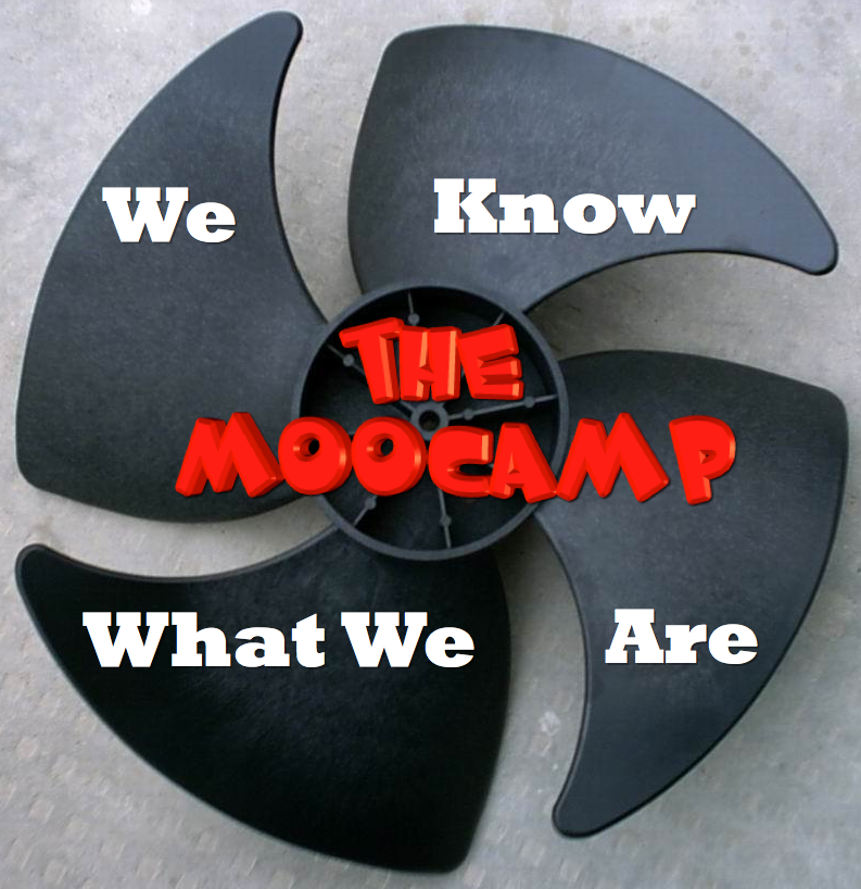 MK Dons - The MooCamp - We Know What We Are
